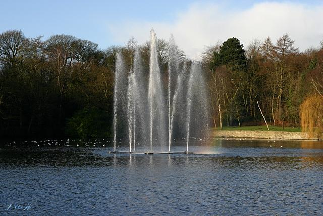 "2nd January 2012 - ""Roundhay Park"""