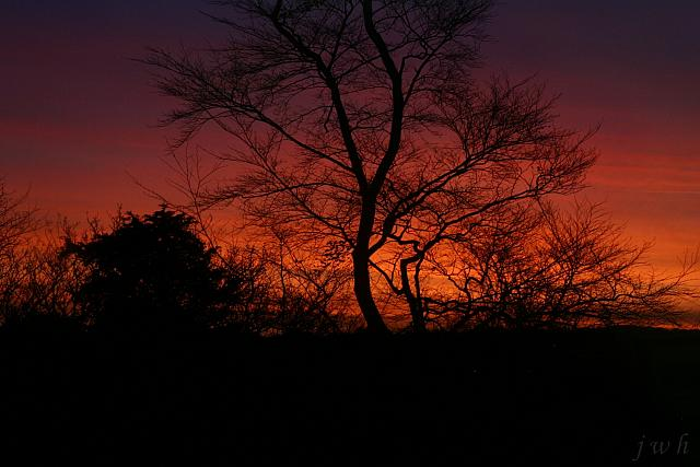 "12th January 2012 - ""Sunset"""