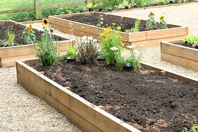 "24th July 2012 - ""Raised Beds"""