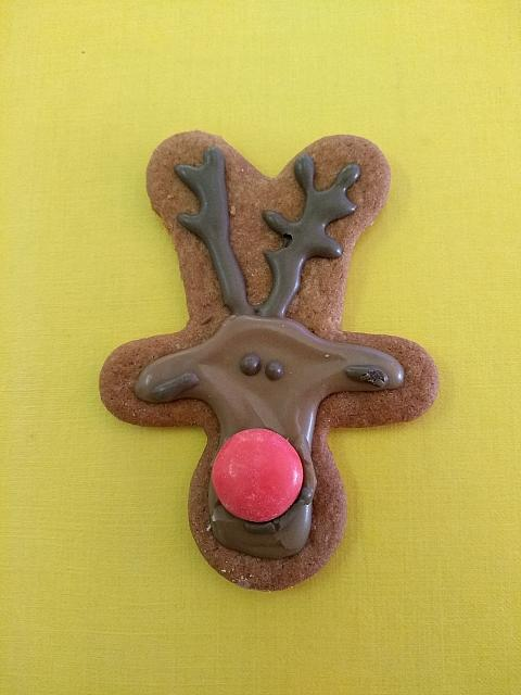 "17th December 2018 - ""Gingerbread Reindeer"""