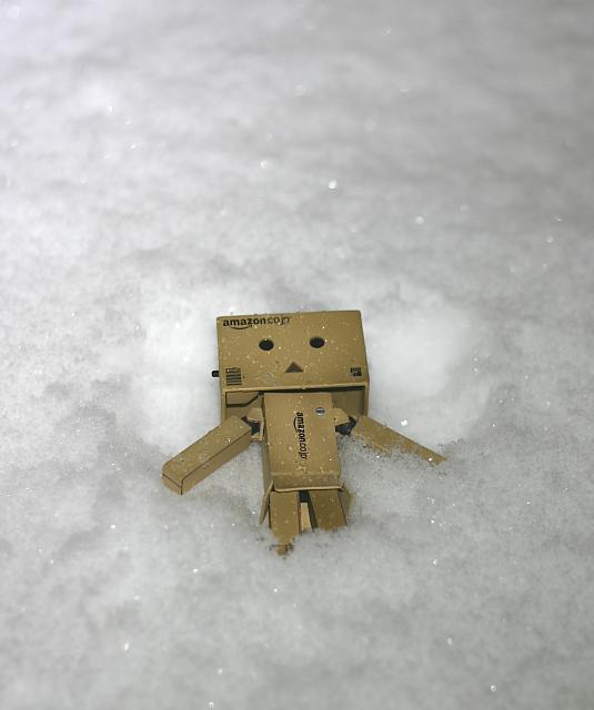 Danbo - Snow Angel