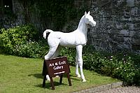 "2nd June 2011 - ""Horse at Cotehele House"""